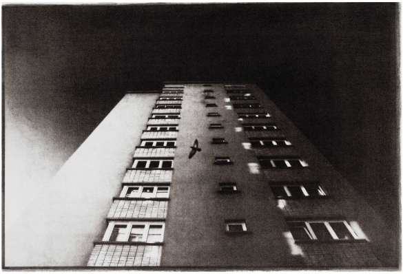 bertvanpelt-facades